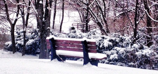 winter snow bench